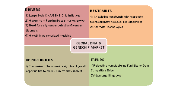 DNA Market, Genechips Market, Gene Chip Market