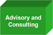 Advisory n Consulting