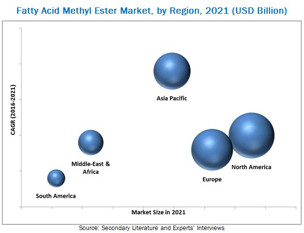 Fatty Acid Methyl Ester Market