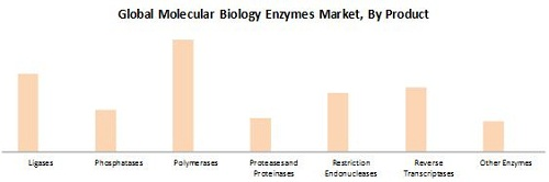 Molecular Biology Enzymes, Kits, & Reagents Market