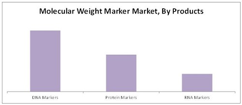 Molecular Weight Marker Market