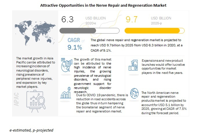 Nerve Repair And Regeneration Market