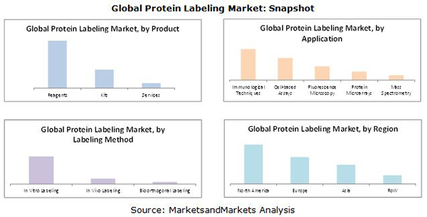 Protein Labeling Market