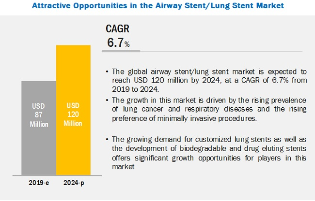 Airway Stent / Lung Stent Market