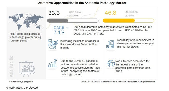 Anatomic Pathology Market