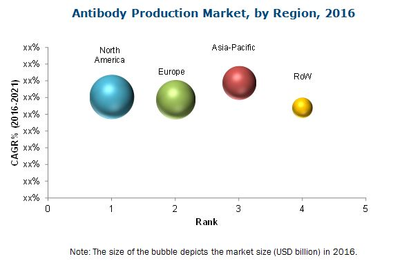 Antibody Production Market
