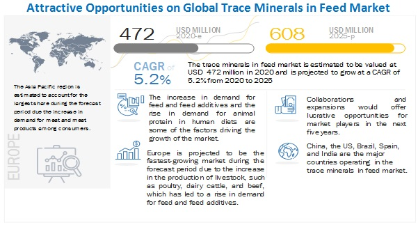Trace Minerals in Feed Market