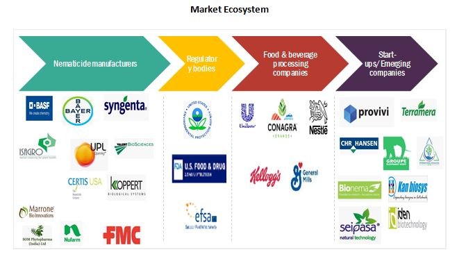 Biofertilizers Market Ecosystem