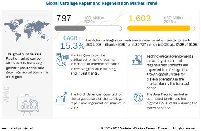Cartilage Repair Market Emerging Growth Factors and Regional Forecast: Analysis Report