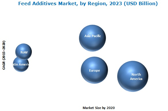 Cattle Feed & Feed Additives Market