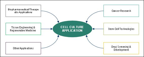 Cell Culture Market by Application