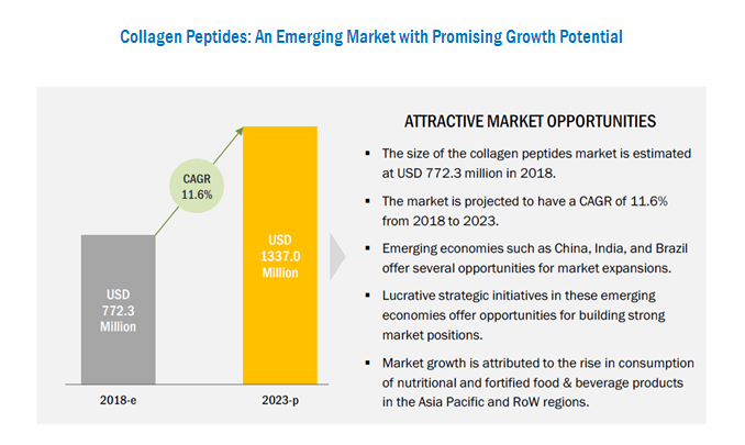 Collagen Peptides Market