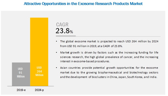 Exosome Research Products Market