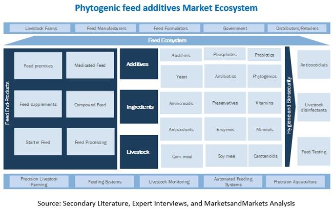 Phytogenic Feed Additives Market Ecosystem