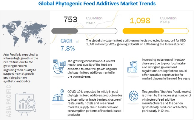 Phytogenic Feed Additives Market