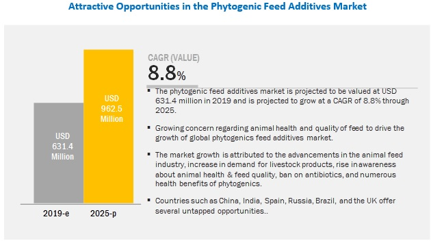 Feed Phytogenics Market Share, Industry Growth, Forecast to 2023