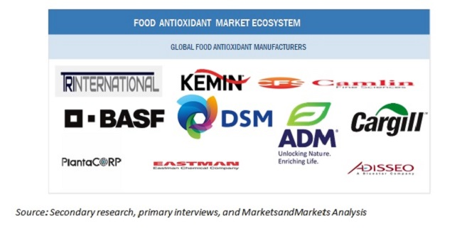 Food Antioxidants Market Ecosystem
