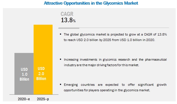 Glycobiology Market - Breakdown of Primary Participants