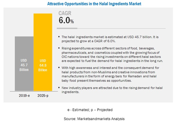 Halal Ingredient Market - Global Industry Analysis and