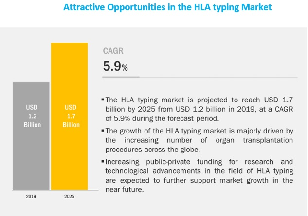 HLA Typing Market