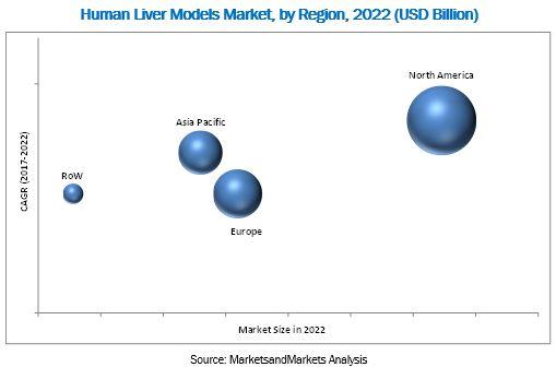 Human Liver Models Market