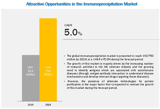 Immunoprecipitation Market