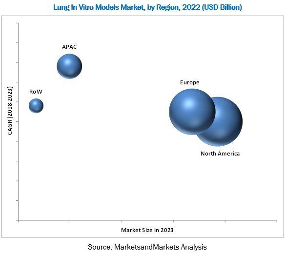 In Vitro Lung Model Market