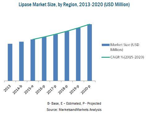 Lipase Market