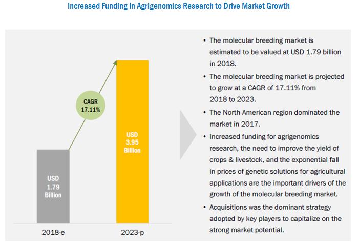 Molecular Breeding Market