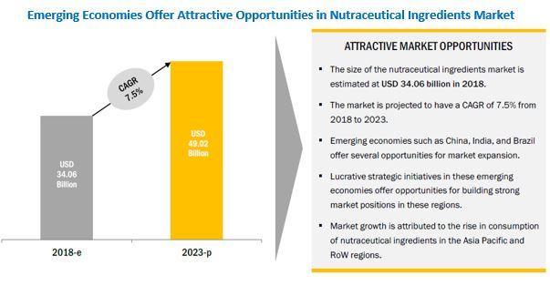 Nutraceutical Ingredient Market
