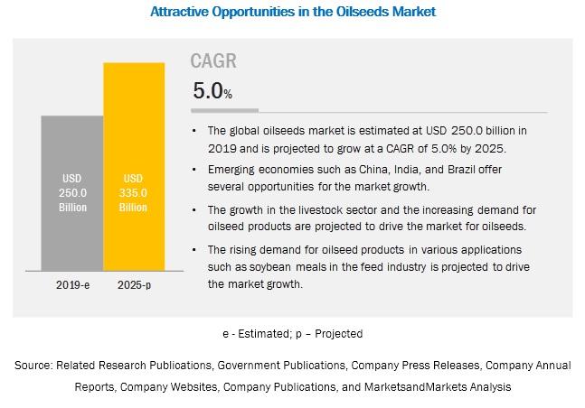 Oilseeds Market