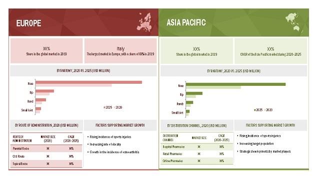Osteoarthritis Therapeutics Market By Region