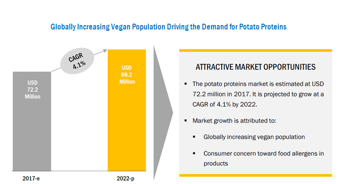 Potato Protein Market