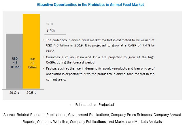 Probiotics in Animal Feed Market