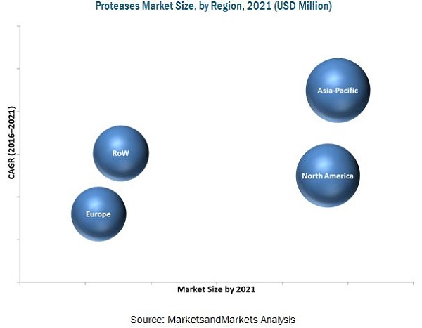 Proteases Market