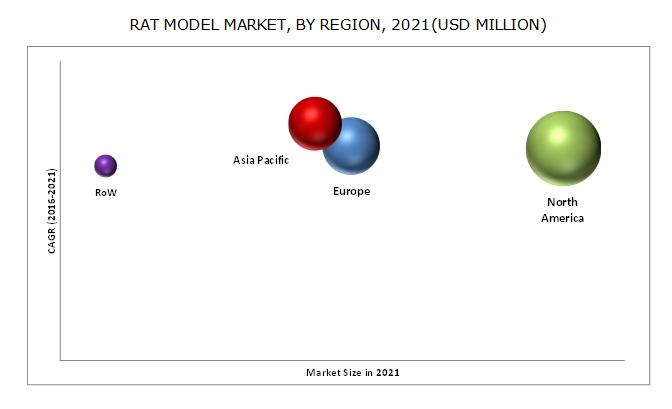 Rat Model Market