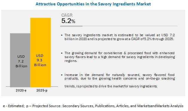 Savory Ingredients Market Share
