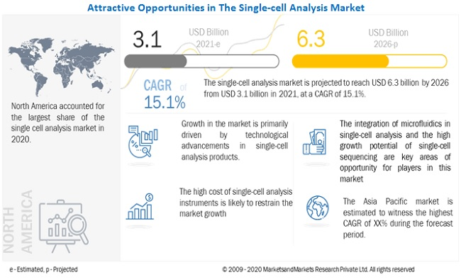 Single-cell Analysis Market
