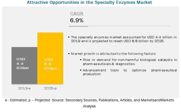 Specialty Enzymes Market