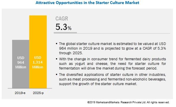 Starter Culture Market