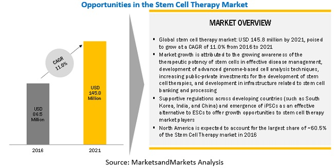 Stem Cell Therapy Market-By Region