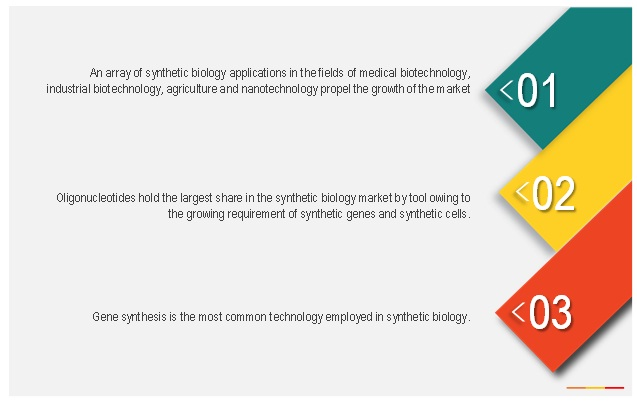 Synthetic Biology Market by Applications