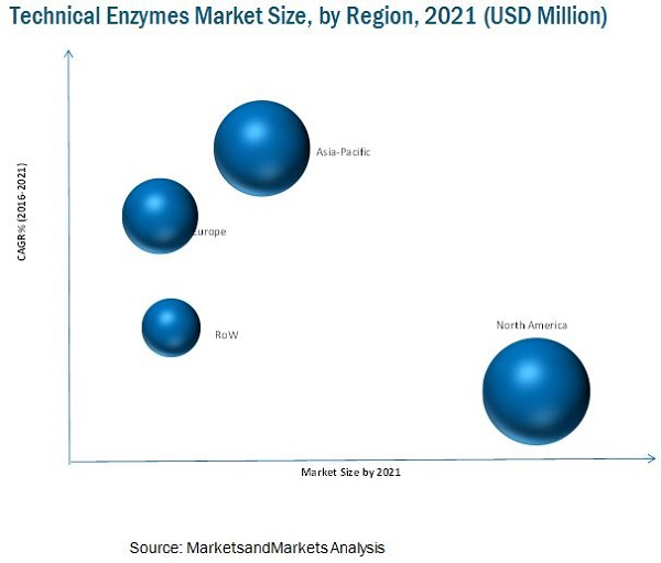 Technical Enzymes Market