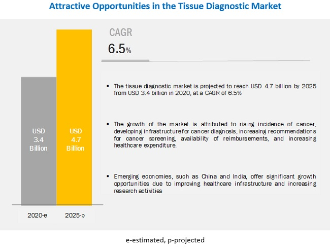 Tissue Diagnostics Market - Breakdown of Primary Participants