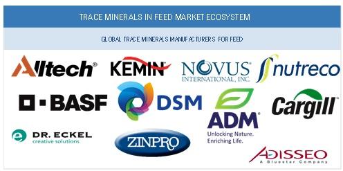 Market Ecosystem