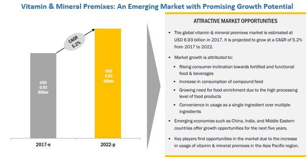 Vitamin & Mineral Premixes Market