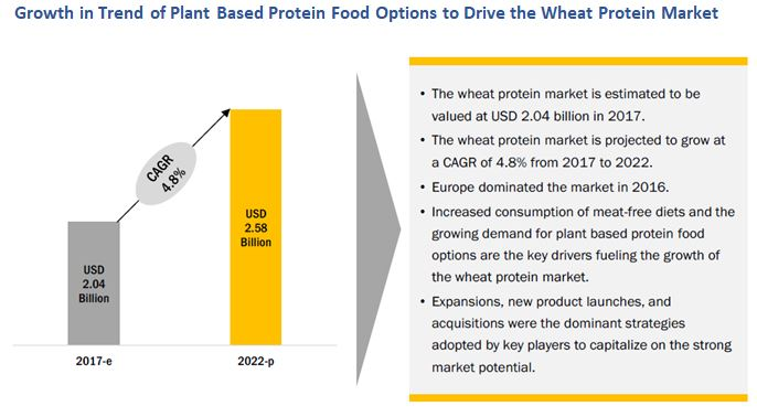 Wheat Protein Market Growth Trends